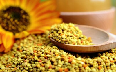 Bees Pollen for weight loss